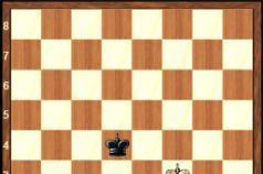 Областная спортивная школа по шахматам А