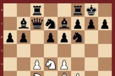 Ёж в шахматах: Учебник стратегии и тактики